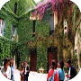 "The Courtyards ""Barocche"" - Italian Language Schools"
